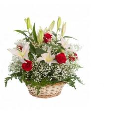Товар в горшечные цветы - 4