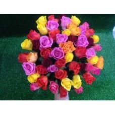 51 голландская роза 45 см
