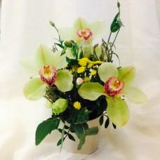 Цветок Богини