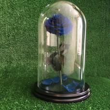Долговечная роза в стеклянной колбе Royal Blue