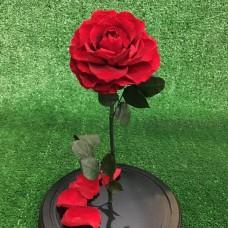 Роза в колбе №5 Вермонт Ред