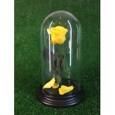 роза в колбе №2 Cафран