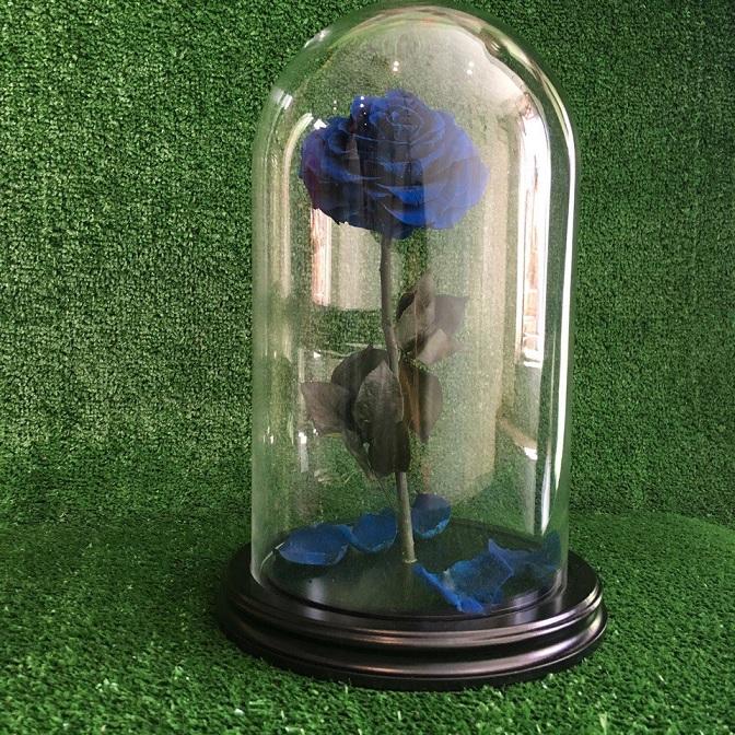 роза в колбе, стабилизированная роза, долговечные цветы, стабилизированные цветы