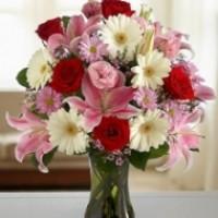 Цветы по любому поводу | Долина Роз