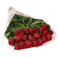 Голландские розы | Долина Роз