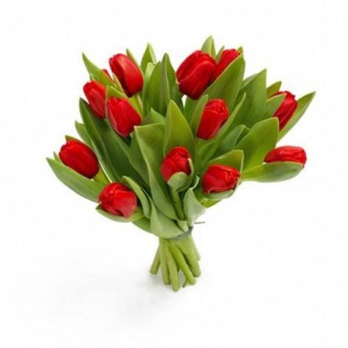 Где в нижнем новгороде купить тюльпаны