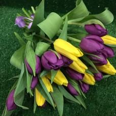 25 Тюльпанов Ассорти