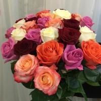 21 Высокая яркая роза