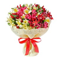 Язык цветов - альстромерии | Долина Роз