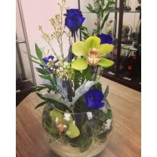 Морской аквариум с орхидеей и синими розами