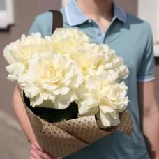"""Купить розу """"Софи Лорен"""""""