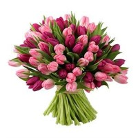 Тюльпаны к 8 марта! | Долина Роз