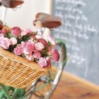 Заказать цветы  доставкой | Долина Роз
