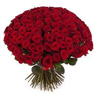 101 роза | Долина Роз