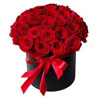 101 роза - классика на века | Долина Роз