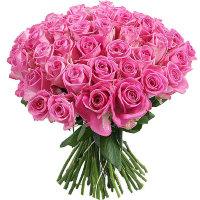 Яркость 51 розы | Долина Роз