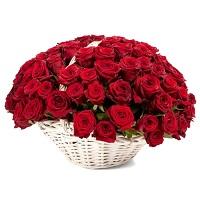 Где купить розы в Н.Новгороде | Долина Роз