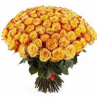 Купить 101 розу | Долина Роз