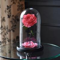 Роза в колбе | Долина Роз