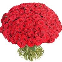 Когда дарить 101 розу? | Долина Роз