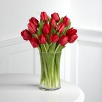 Купить тюльпаны в Нижнем Новгороде | Долина Роз