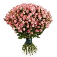Кустовая роза – нетипичный сорт популярного растения | Долина Ро