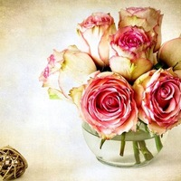 Где заказать цветы? | Долина Роз
