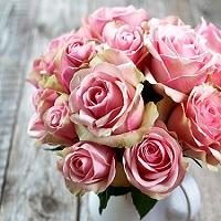 Где лучше купить цветы? | Долина Роз