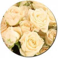 Доставка роз в Н.Новгород | Долина Роз
