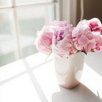 Пионы или розы? | Долина Роз
