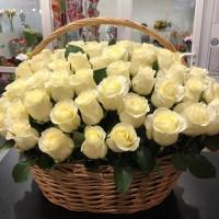 Шикарная корзина со 101 эквадорской розой