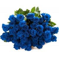 Синие розы в Нижнем Новгороде | Долина Роз