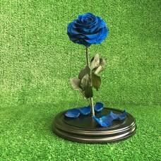 Royal Blue Долговечная роза в стеклянной колбе №5