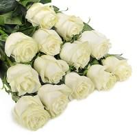 Розы с доставкой | Долина Роз