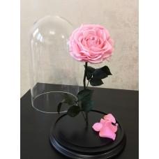 Мишка из роз Тиффани