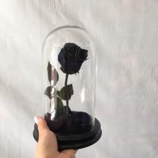 Роза в колбе №2 Магма