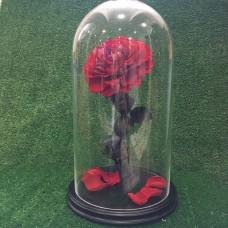 "Роза в колбе №6 ""Верона Ред"""