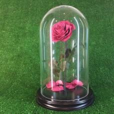 "Роза в колбе №5 ""Фламинго"""
